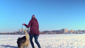 Het aantrekkelijke meisje spelen met haar Schor hond op bevroren rivier tegen achtergrond van cityscape stock video