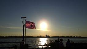 Het aardleven en zonsondergang Royalty-vrije Stock Afbeelding