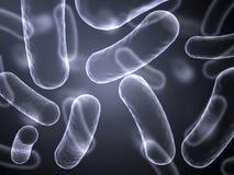 Het abstracte beeld van de röntgenstraal van bacteriëncellen Royalty-vrije Stock Foto's