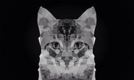 Het abstracte behang van de kleuren lage polybokeh van het kattengezicht zwart-witte stock foto's