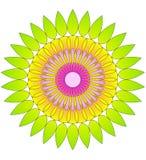 Het abstracte cirkelpatroon van de bloem Royalty-vrije Stock Fotografie