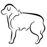 Het abstracte Elegante Profiel van de Hond van de Collie van de Grens Royalty-vrije Stock Afbeelding