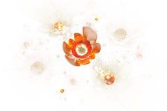 Het abstracte gloeien nam bloemen op witte achtergrond toe Royalty-vrije Stock Afbeeldingen
