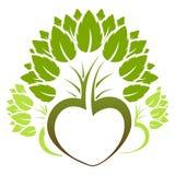 Het abstracte groene embleem van het boompictogram Stock Foto