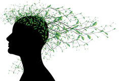 Het abstracte hoofdsilhouet van de vrouw met boombladeren Royalty-vrije Stock Foto
