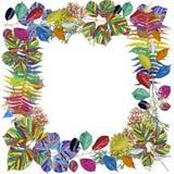 Het abstracte kader van regenboogbladeren Stock Afbeeldingen