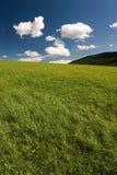 Het abstracte landschap van de zomer Stock Foto's