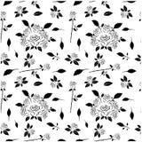Het abstracte naadloze patroon met handtekening isoleerde witte rozen Royalty-vrije Stock Afbeelding