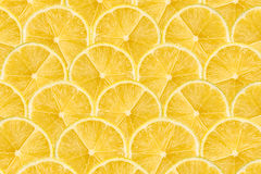 Het Abstracte Naadloze Patroon van de citroenplak Royalty-vrije Stock Afbeelding