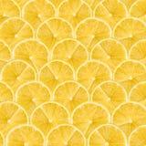 Het Abstracte Naadloze Patroon van de citroenplak Royalty-vrije Stock Foto's