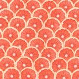 Het Abstracte Naadloze Patroon van de grapefruitplak Stock Fotografie