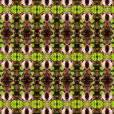 het abstracte naadloze patroon van de vlindervleugel Stock Foto's