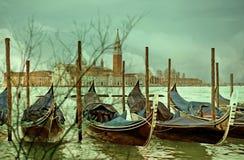 Het abstracte onduidelijke beeld van de boombezinning met Venetië als achtergrond Italië Royalty-vrije Stock Foto's