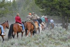 Het achter berijden van het paard op sleep Royalty-vrije Stock Foto's