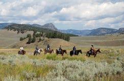 Het Nationale Park van Yellowstone, de V.S. Stock Foto's