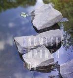 Het acroniem van zeer belangrijke Kennis machtigt u geschreven op blauwe waterachtergrond stock foto