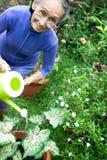 Het actieve en gelukkige hogere vrouw tuinieren Stock Foto