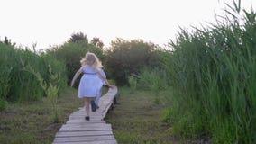 Het actieve van de jonge geitjesmeisje en jongen spel loopt en loopt op houten brug in aard onder groen riet de achterstand in stock footage