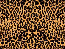 Het af:drukken van de luipaard vector stock illustratie
