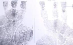 Het af:drukken van de palm. Royalty-vrije Stock Foto