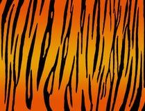 Het af:drukken van de tijger stock illustratie