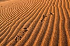 Het Af:drukken van de voet in de Woestijn van de Sahara Stock Fotografie