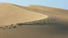 Het af:drukken van de voet in het woestijnzand Stock Foto