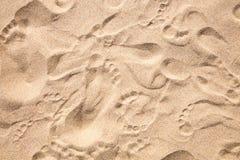 Het Af:drukken van de voet in het Zand Stock Afbeeldingen