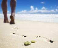 Het af:drukken van de voet op een zandig strand Stock Foto