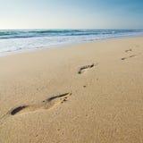Het af:drukken van de voet op het strand stock afbeeldingen