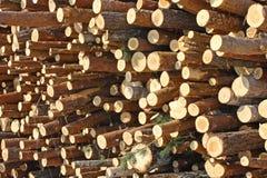 Het afgesneden hout Stock Afbeeldingen