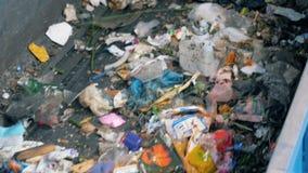 Het afval gaat op een transportband voor recycling bij een speciale fabriek 4K stock videobeelden