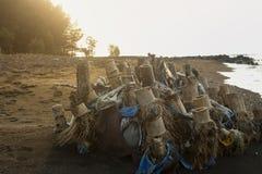 Het afval van de bamboewortel op het strand royalty-vrije stock foto