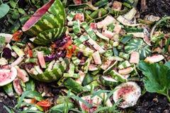 Het afval van de watermeloenstortplaats in de tuin in de zomer royalty-vrije stock foto
