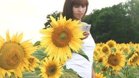 Het agronoommeisje verzendt fotorapport door smartphone op een gebied van zonnebloemen, de raming van de zonnebloemoogst stock footage
