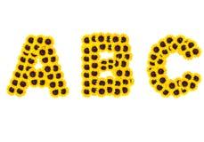 Het alfabet van brievenabc met zonnebloem Royalty-vrije Stock Foto's