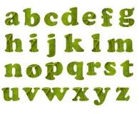 Het alfabet van Eco Royalty-vrije Stock Foto's