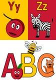 Het Alfabet y-z van de kleuterschool Stock Foto