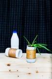 Het aloë Vera upcycled binnen pot Stock Foto