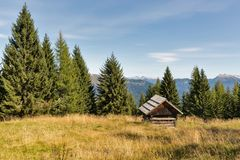 Het alpiene houtlandschap met de jacht brengt in Westelijke Carinthia, Oostenrijk onder Stock Afbeeldingen
