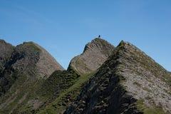 Het Alpiene landschap van de zomer. Stock Fotografie