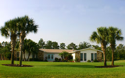 Het Amerikaanse Huis van de Droom met palmen en blauwe deuren Stock Afbeeldingen