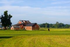 Het Amerikaanse Landschap van het Land stock afbeeldingen
