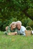 Het amuseren van oud paar in de zomerpark Royalty-vrije Stock Afbeeldingen