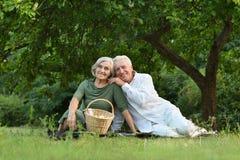 Het amuseren van oud paar op picknick Royalty-vrije Stock Foto's