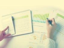 Het analyseren van BedrijfsGegevens Stock Foto