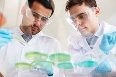 Het analyseren van vloeistoffen stock foto
