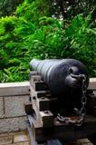 Het antieke kanon ziet het bos onder ogen Stock Foto's
