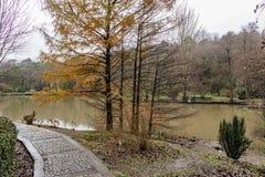 Het Arboretum van Atatà wordt ¼ rk gevestigd in het zuidoosten van de Belgrad-Bossen in Bahçeköy een deel van Sarıyer-district stock fotografie