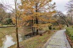 Het Arboretum van Atatà wordt ¼ rk gevestigd in het zuidoosten van de Belgrad-Bossen in Bahçeköy een deel van Sarıyer-district royalty-vrije stock foto